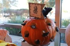 Dr. Crothers Pumpkin